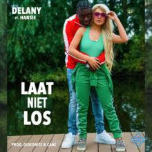 Delany laat niet los hansie artwork