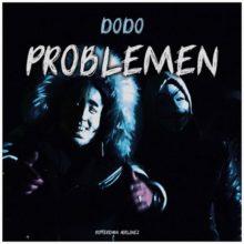 Dodo Problemen