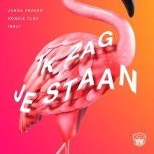 Ik Zag Je Staan (ft. Idaly & Ronnie Flex)