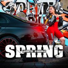 Lauwtje Spring