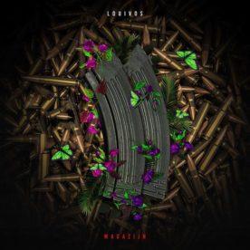 """LouiVos dropt tweede single """"Magazijn"""" van zijn aankomen """"Exotische Wapens"""" album"""