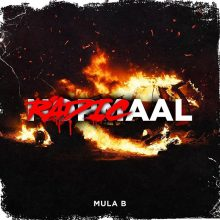 Radicaal lyrics